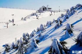 國內有哪些地方適合親子滑雪場