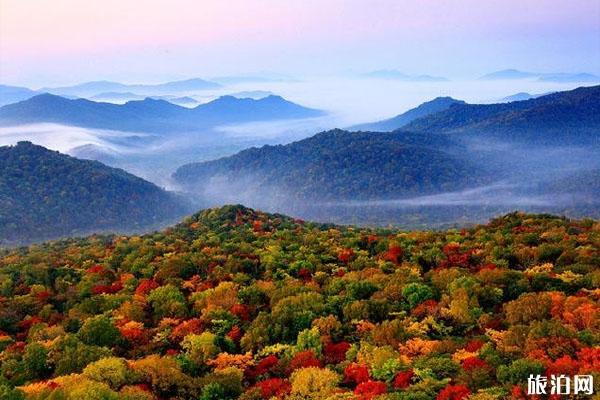 太阳河国家森林公园 太阳河国家森林公园好玩吗 太阳河国家森林公园攻略