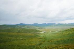 2020瑪曲草原旅游攻略 瑪曲草原門票價格
