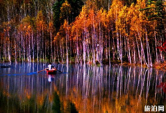 2020年冰湖沟风景区旅游攻略  冰湖沟风景区怎么样