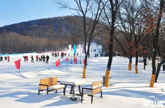 2020年庙香山滑雪场旅游攻略 庙香山滑雪场门票价格