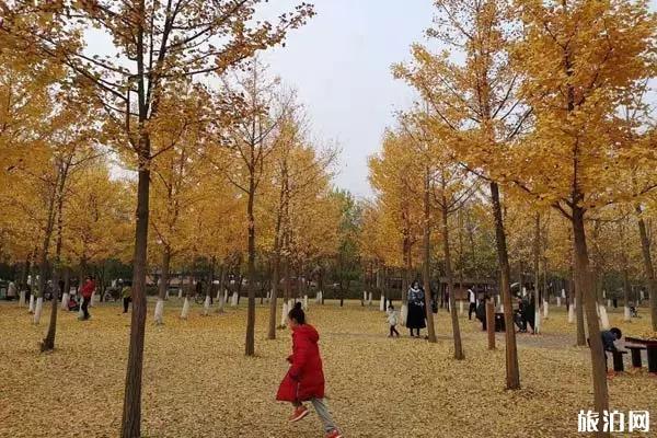 2020北京旅游景点地图和时间表