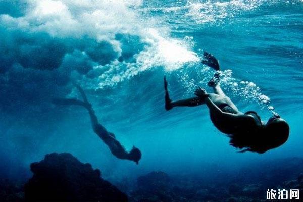 潛水可以摸珊瑚嗎