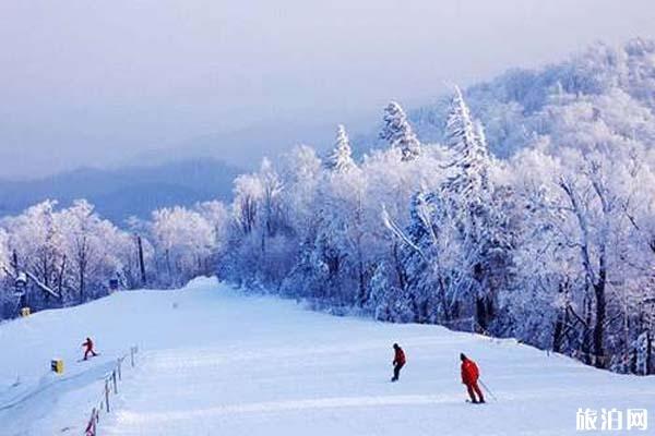滑雪場推薦 我國有哪些比較好的滑雪場