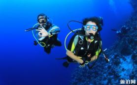 東南亞潛水考證最全攻略 費用和課程信息