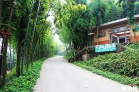 2020大竹五峰山国家森林公园观光车票多少钱 门票多少