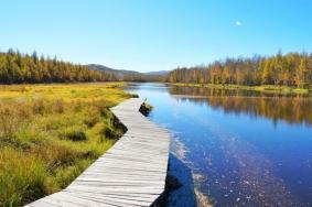 2020伊克薩瑪森林公園旅游攻略門票交通天氣