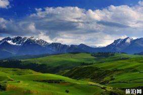 2020江布拉克草原