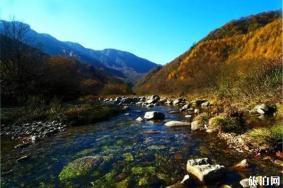 2020米仓山国家森林公园观光车票 天气怎么样