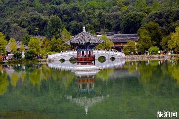 黑龍潭公園梅花節什么時候 附2020年新春活動