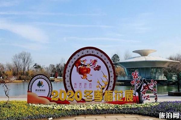 2020西安植物園梅花展1月18日開啟 持續時間-新春活動內容