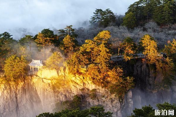 黃山全球游客2020年2月份門票半價