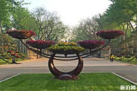 北京市属公园2020新春游园会-冰雪游园会信息