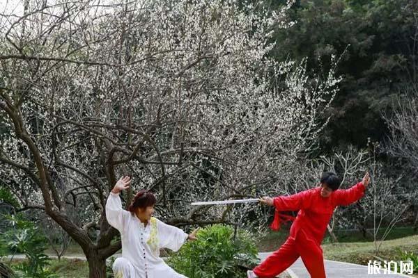 廣州白云湖公園梅花觀賞指南 還能進去嗎