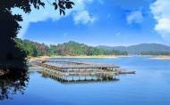 河源万绿湖有什么好玩的-景点介绍