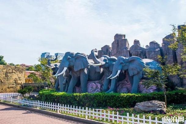 长沙生态动物园攻略 门票多少钱和在哪里