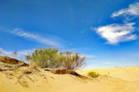 2020神泉生态旅游景区旅游攻略 门票交通天气