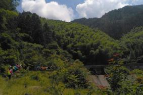 2020三角山森林公园自驾路线和游玩攻略