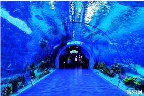 2020上海海昌海洋