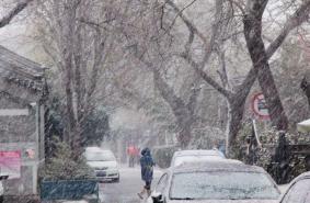 2月14日北京大雪停運及甩站公交-封閉高速
