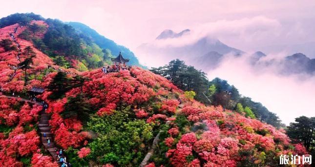 麻城终生免费旅游卡介绍