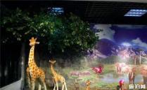 2020柳州动物园有熊猫吗 门票多少钱