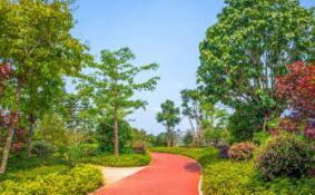 广州珠江公园2月1