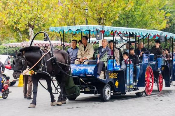 2020天津对全国医护人员免费开放景点