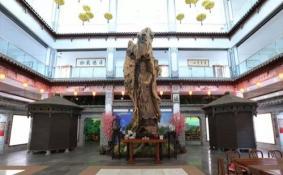 2020云南高黎贡山