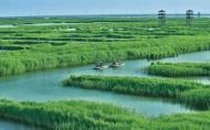 高郵湖蘆葦蕩濕地公園什么季節最美 游玩攻略