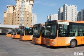 2020年青岛公交停