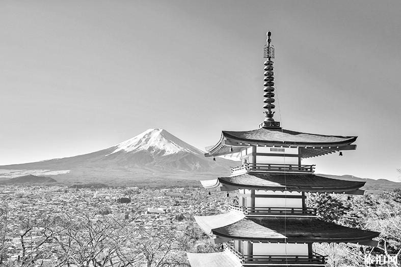四月份中國留學生怎么回日本