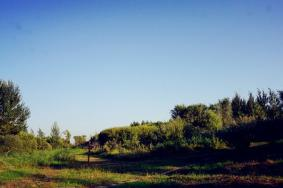 2020哈尔滨金河湾湿地植物园旅游苹果彩票网