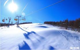 萬龍度假天堂開放限額預約滑雪 附預約方式