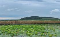 2020富锦国家湿地公园旅游苹果彩票网