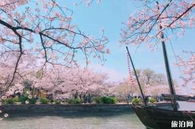 三月樱花哪里最好看