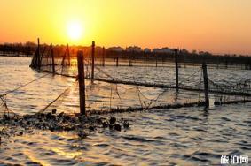 江苏阳澄湖有什么景点 旅游景点推荐