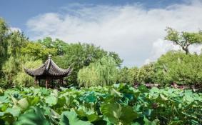 苏州拙政园等园林
