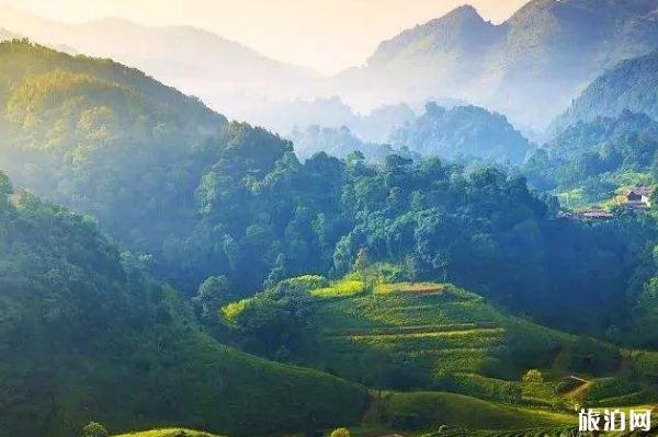 2020蒙頂山風景區門票多少錢 優惠免費政策