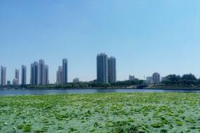 2020劳动湖旅游攻