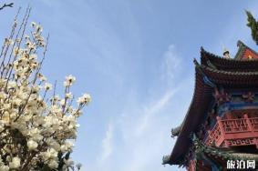 2020开封天波杨府开放时间和门票优惠政策