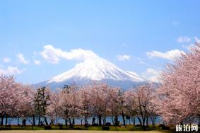 去日本如何消费省钱