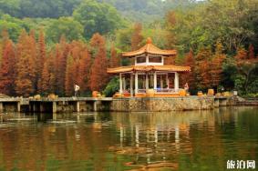 深圳东部华侨城现在开放吗 2020深圳仙湖植物园开放时间及区域