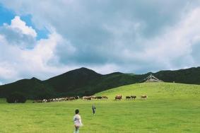2020扎魯特山地草原旅游區旅游攻略