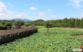 珠海十里蓮江農業觀光體驗園門票多少錢