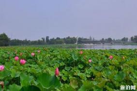 阳澄湖半岛骑行路线和沿线景点介绍