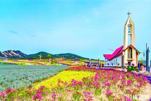 2020青岛西海岸生态观光园油菜花开了吗 开放时间和门票优惠政策