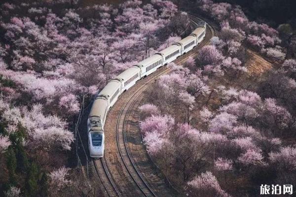 北京春天适合去哪玩 4月北京去哪玩比较好