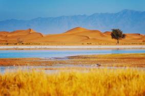 2020騰格里沙漠天鵝湖旅游攻略