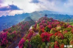 貴州清明節適合旅游的地方